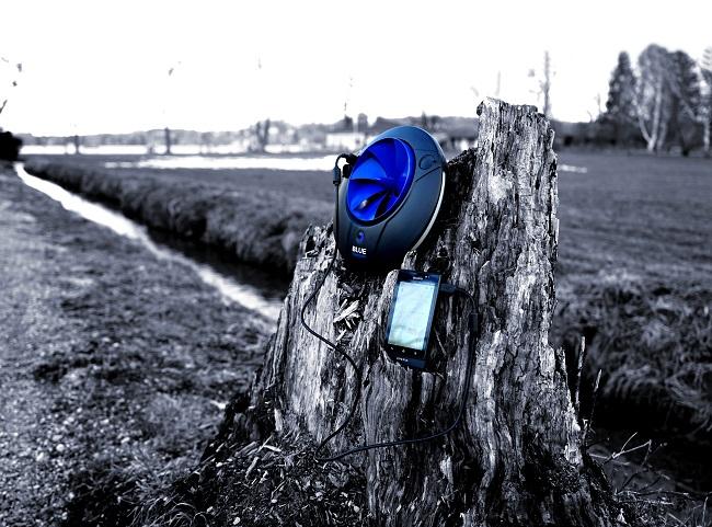 Blue Freedom Nature