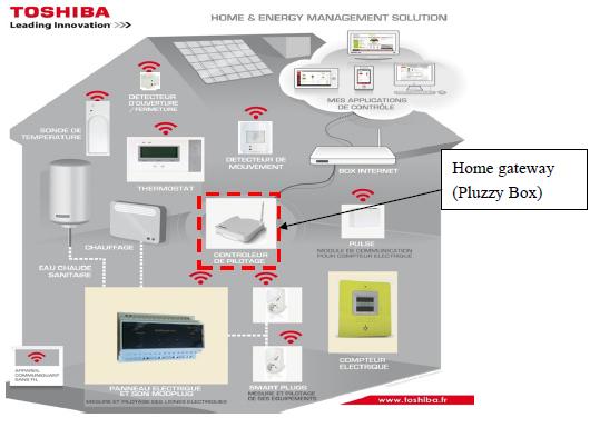 pluzzy-network